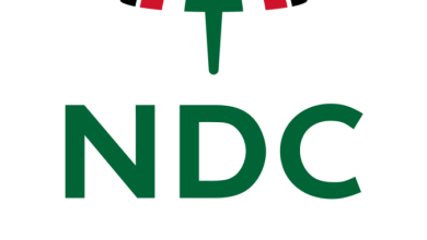NDC's 2020 Vice-presidential candidate