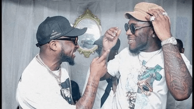 Cause Of Davido And Burna Boy's Fight In Ghana, Nigerian Superstars Davido and Burna Boy Fight Dirty As they Exchange Blows in Accra – Video