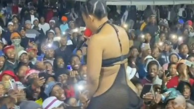 Pantless dancer, Zodwa Wabantu allows fans dip their hands between her thighs as she performs in skimpy see-through piece (video)