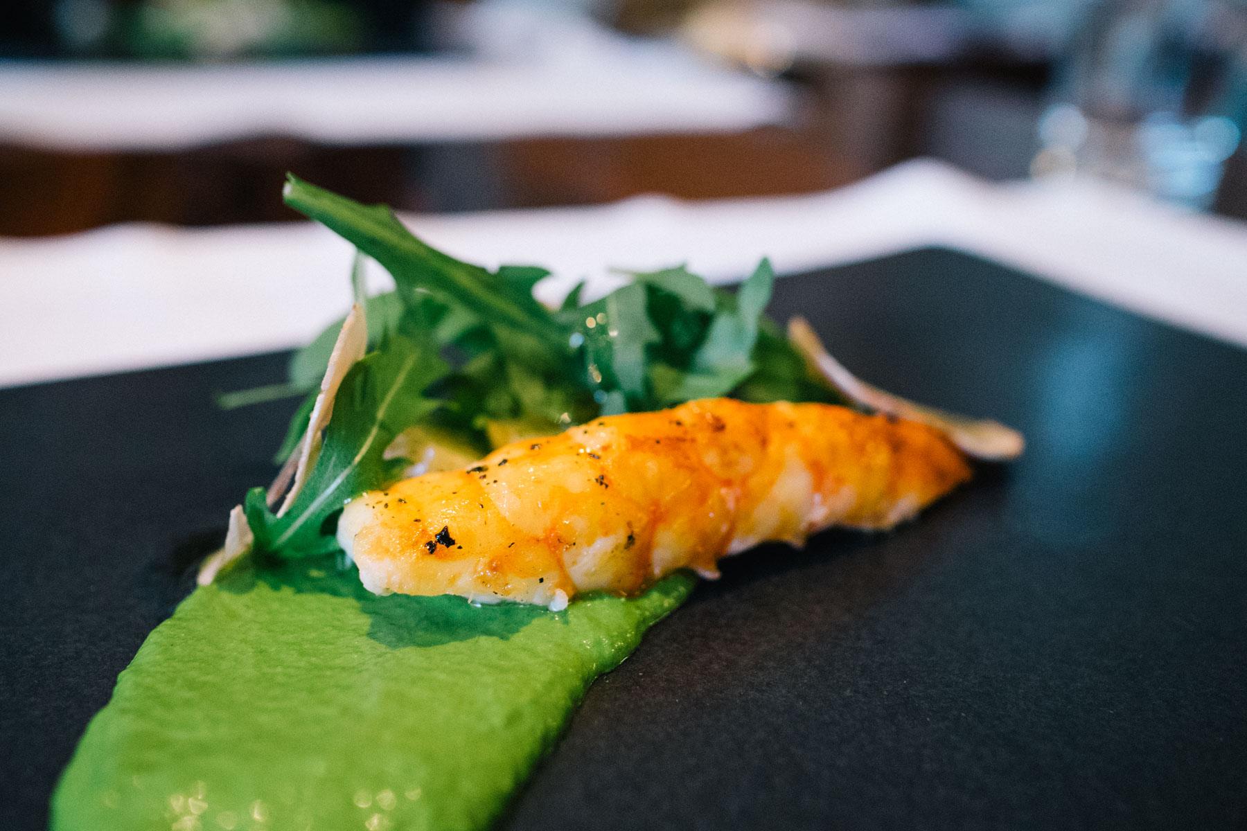 Francisco Shrimp Best San