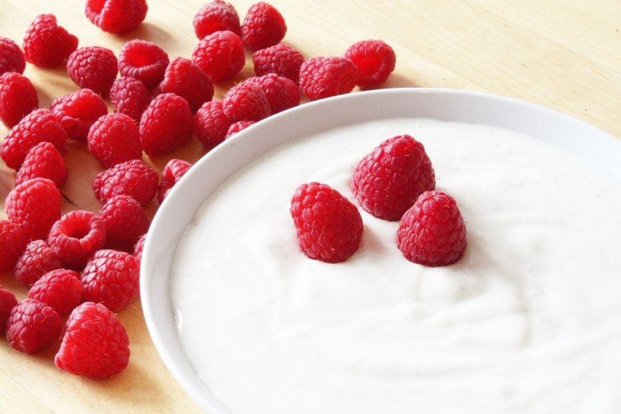 curd healthy food for immunity