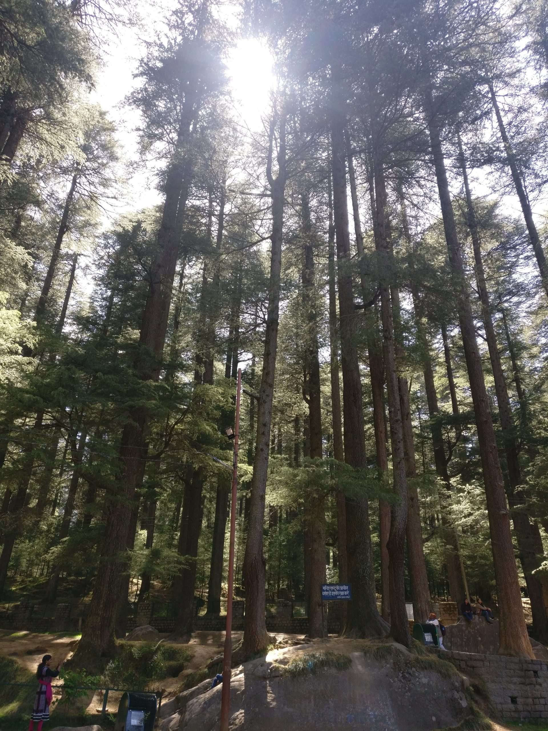 places to see in manali