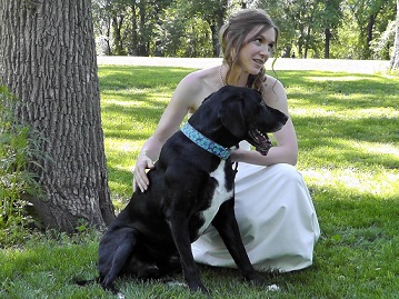 My dog Ace at our wedding