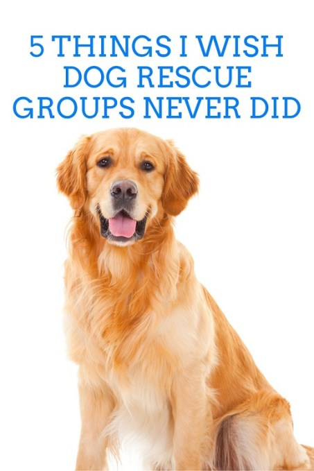 Dog rescue groups