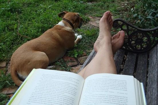 "Reading ""The Story of Edgar Sawtelle"""