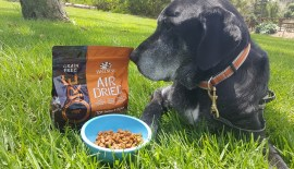 Wellness CORE Air Dried Dog Food – Giveaway