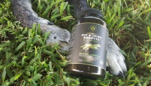 Mavericks Ranch Review and Coupon Code – Hip & Joint Booster for Dogs