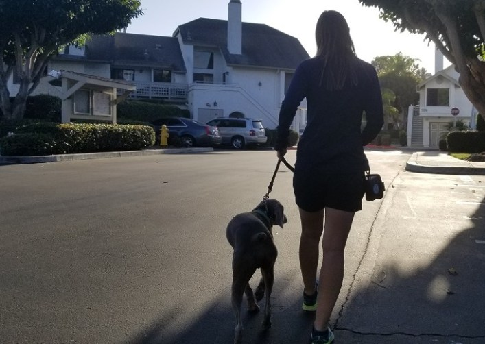 Walking with the PooVault