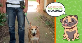 Huge Mighty Paw Giveaway! $500 Cash + Products