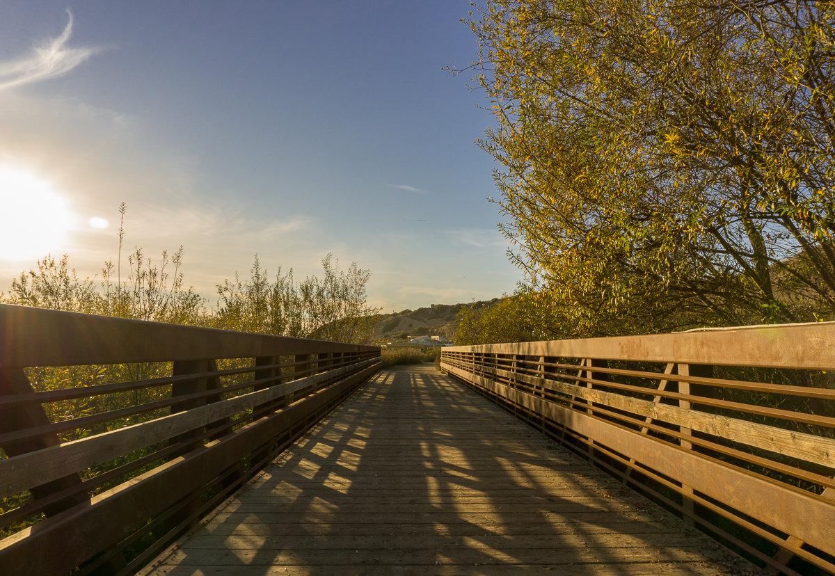 Bridge in Crystal Cove State Park