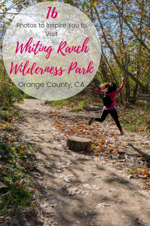 16 Photos to Inspire You to Visit Whiting Ranch Wilderness Park