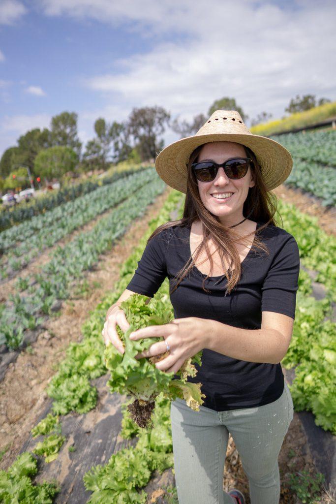 Picking veggies at Tanaka Farms