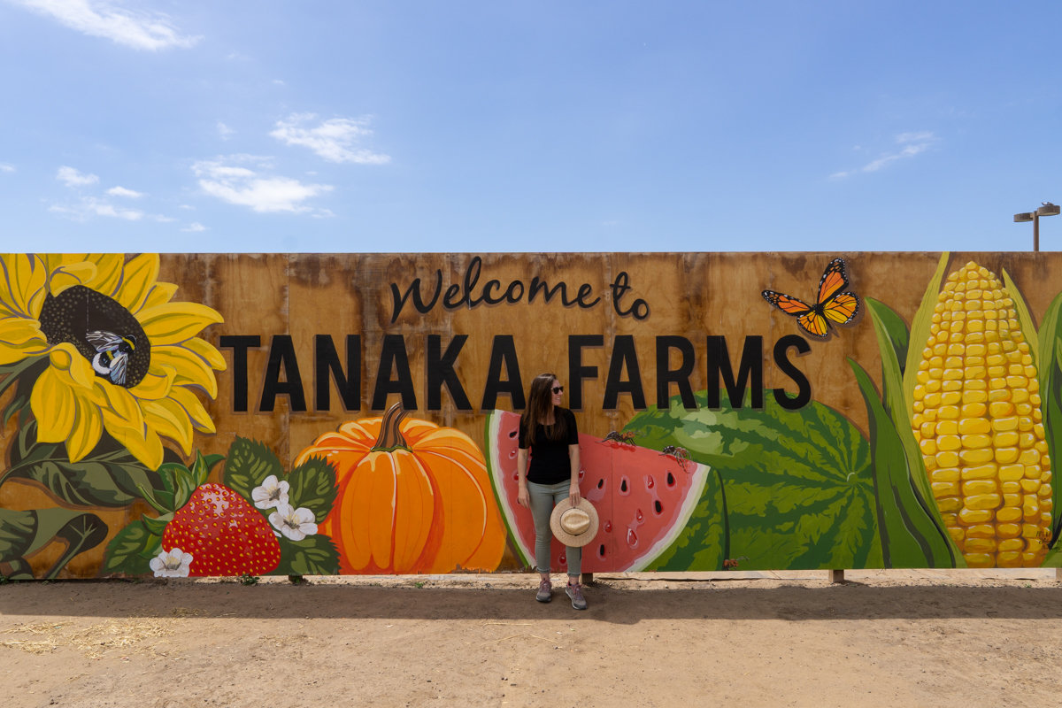 Entrance to Tanaka Farms