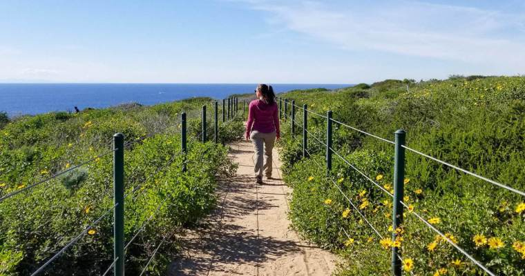 10 Easy Hikes in Orange County with an Amazing View