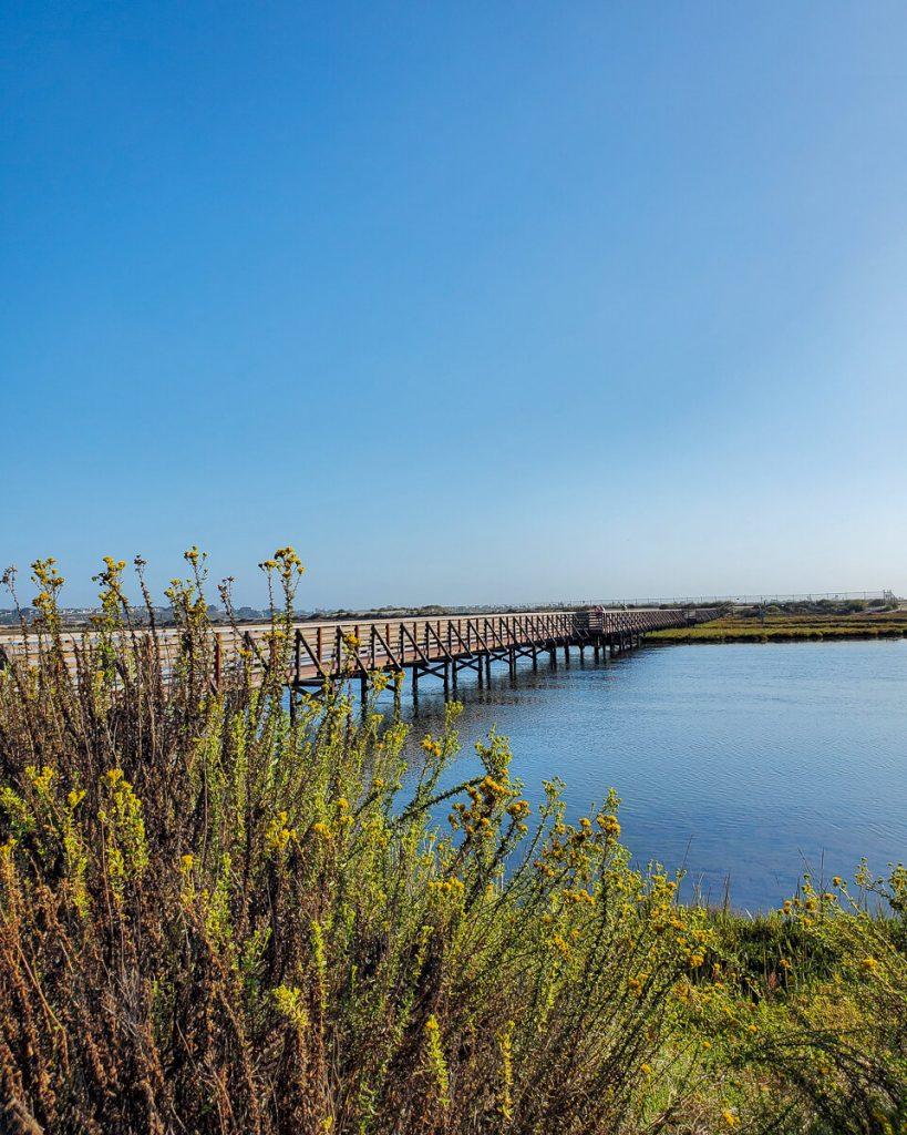 View of the Bolsa Chica Wetlands bridge