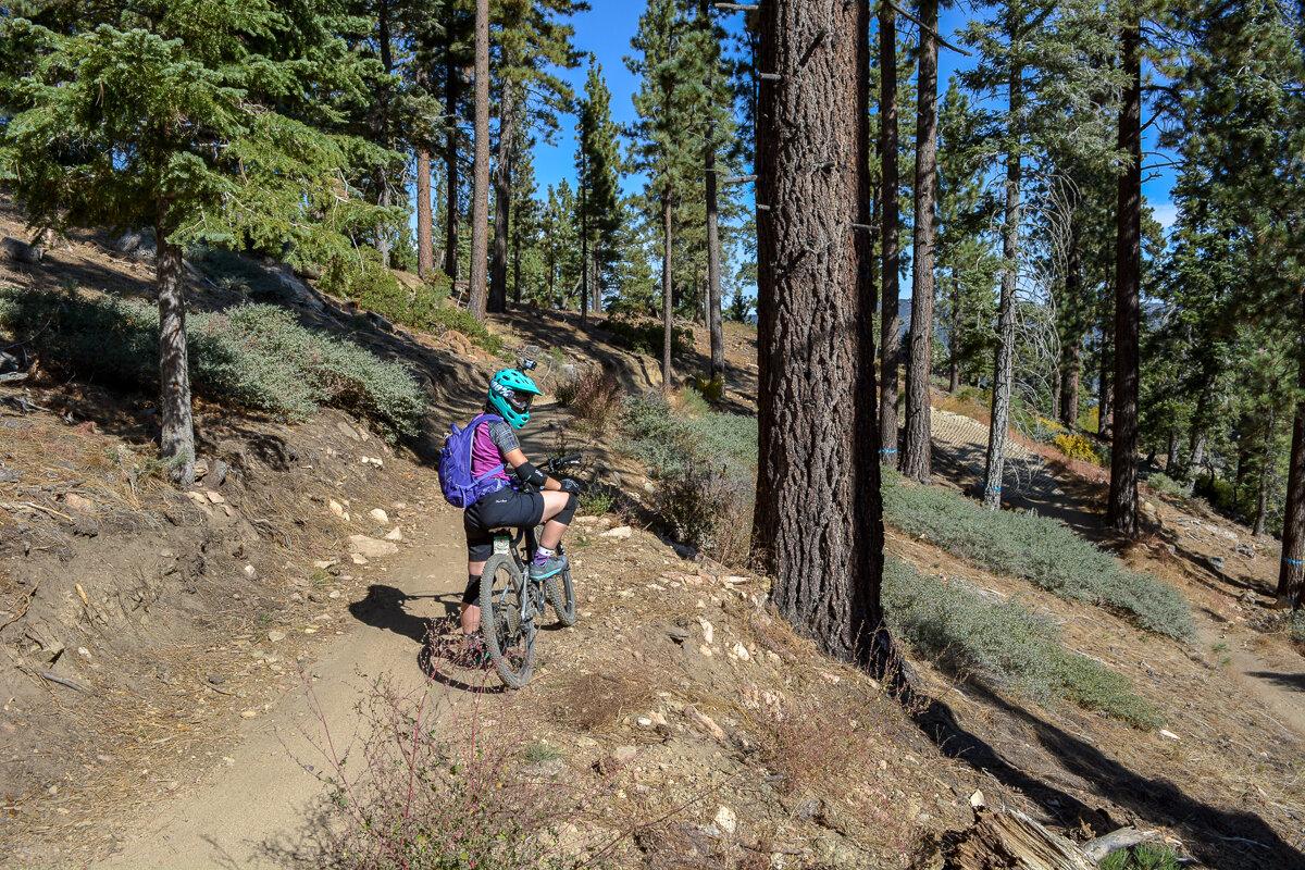 Mountain bike trail in Big Bear, California