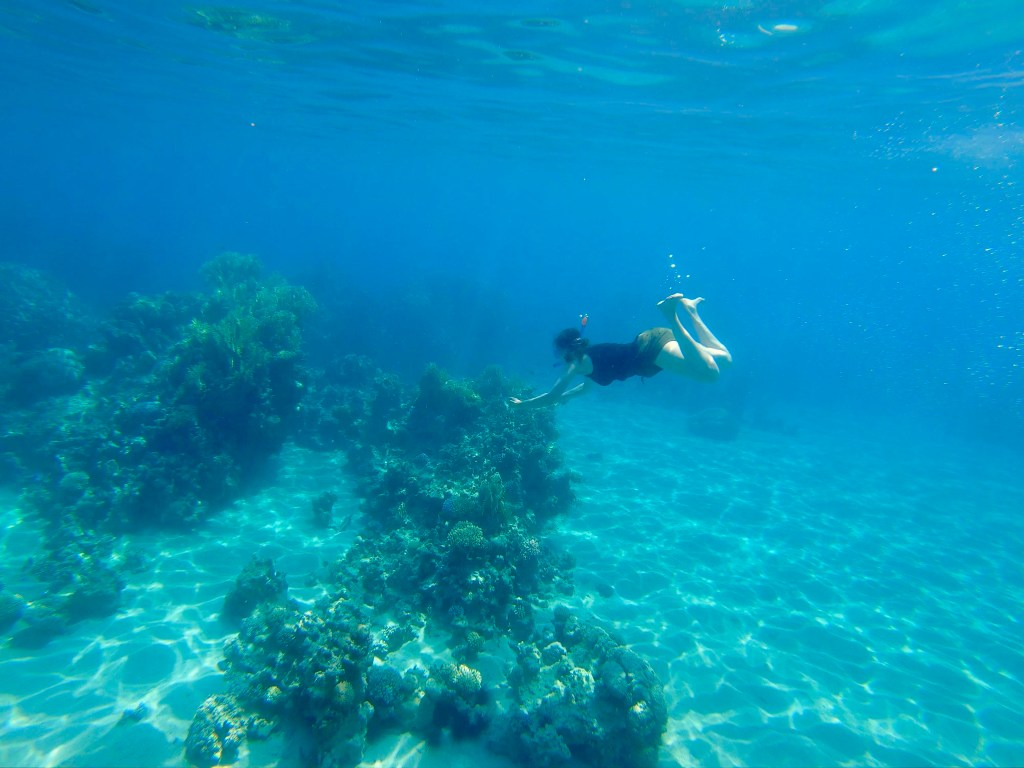 Snorkelling in the Red Sea @ Aqaba