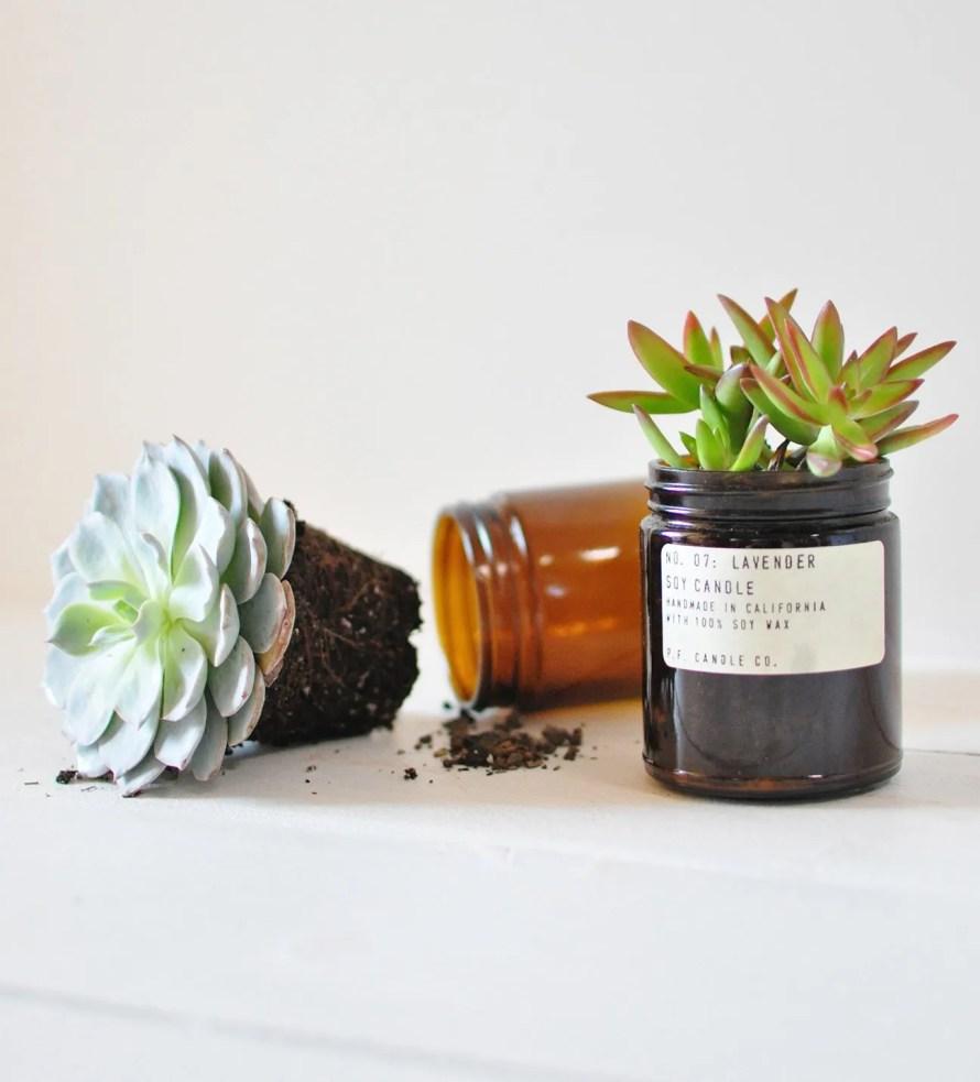 candle jar reuse home succulents scandinavian