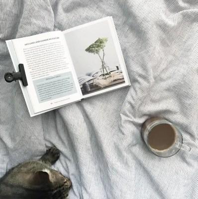 scandinavian feeling cozy home cat book autumn