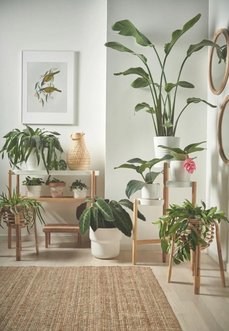 ikea news 2021 catalogue plantstand buskbo 1