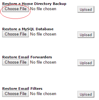 Click on Choose File under Restore a Home Directory Backup