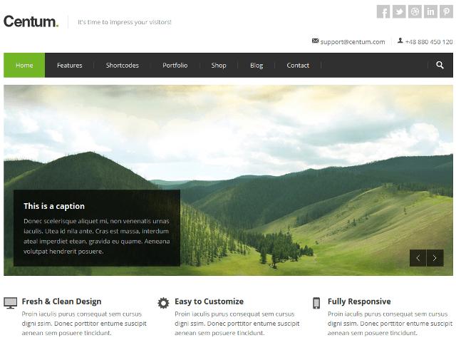 Responsive, Beautiful, Boxed Layout Portfolio WordPress Theme