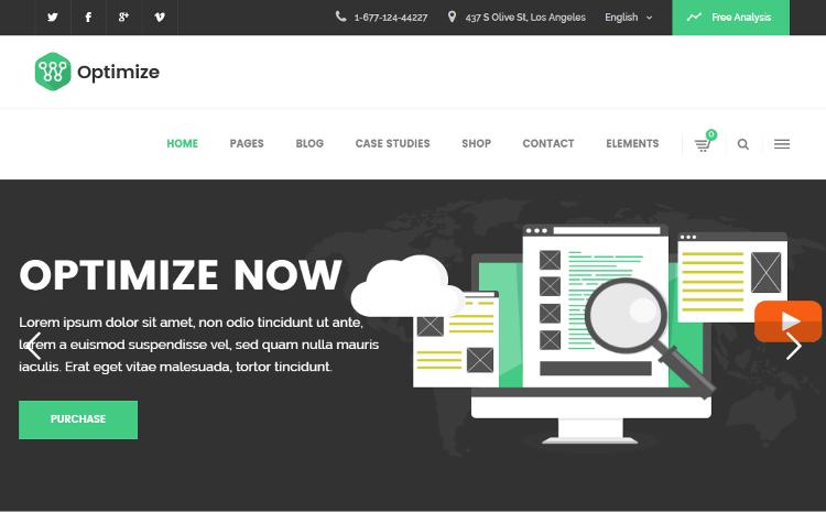 Optimize WordPress Theme
