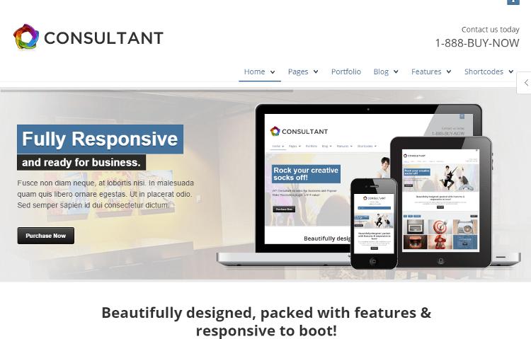 WP Consultant WordPress Theme