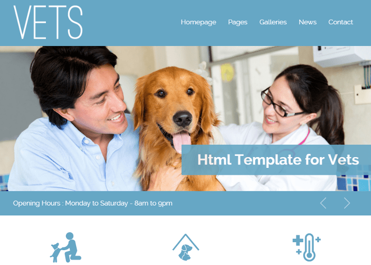 VETS HTML5 Template