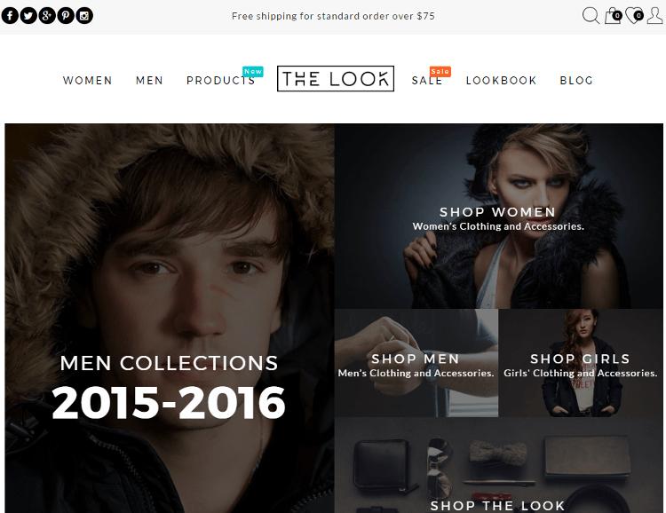 The Look WordPress Theme