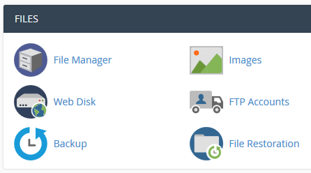 Click on File manager in cPanel