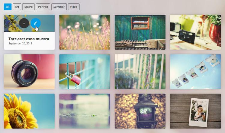 Go Portfolio WordPress Plugin