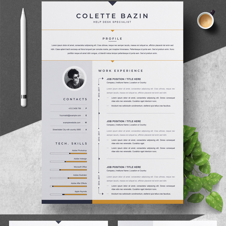 Bazin Resume Template