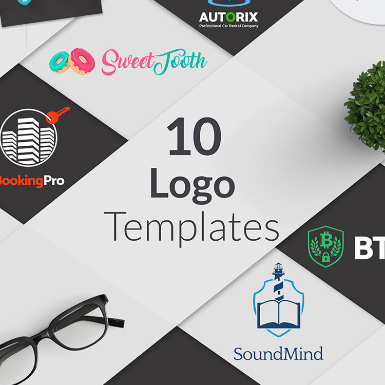 Bundle of 10 Professional Layouts of Ready-to-Use Niche Business Logo Template