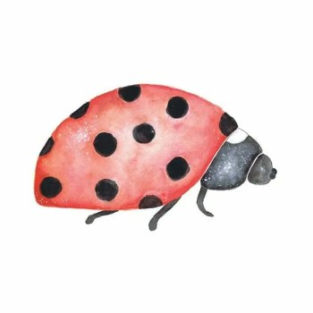 Ladybug Marie - Wall stories from ThatsMine