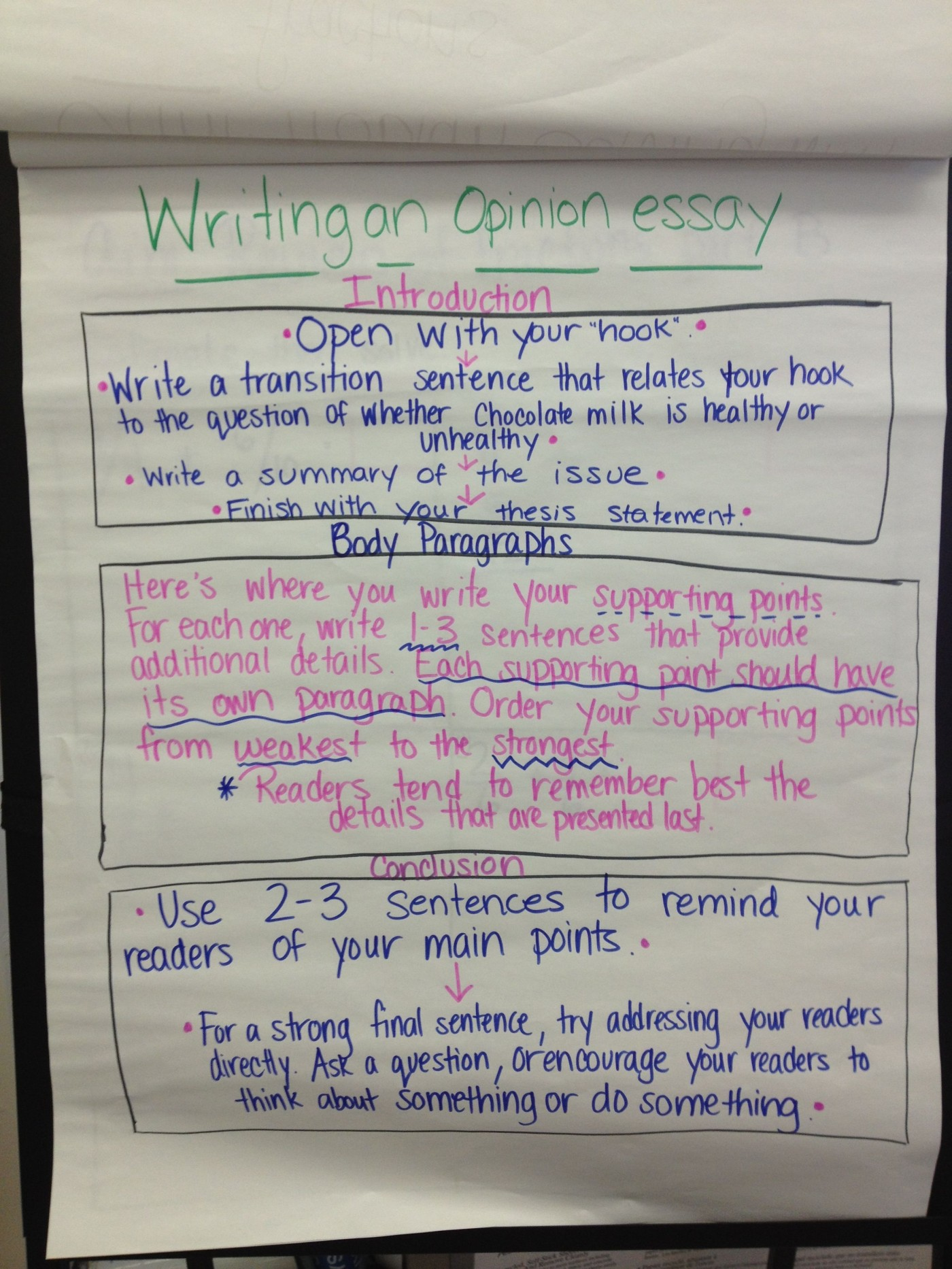 017 Steps To Writing An Opinion Essay Example Thatsnotus