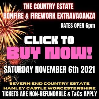 Bonfire and Firework Extravaganza