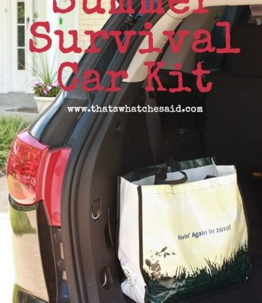Summer-Survival-Car-Kit-at-thatswhatchesaid.com