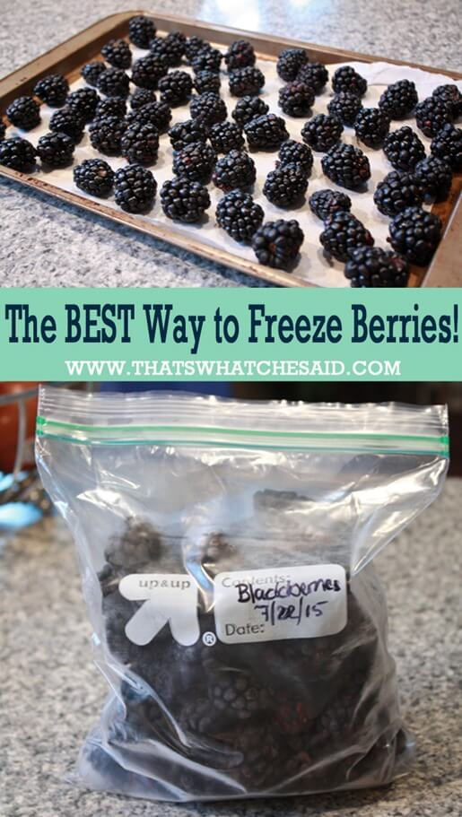 The Best Way to Freeze Berries at thatswhatchesaid.com