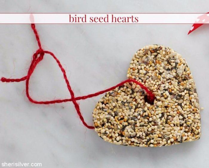 bird seed feeders in heart shapes