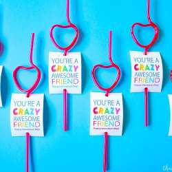 Crazy Straw Valentine