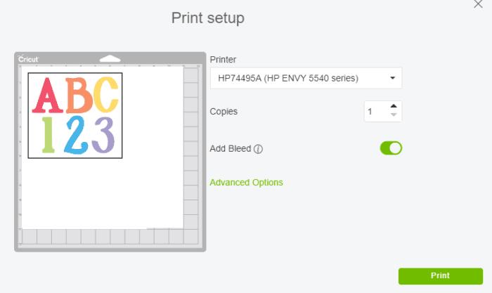 Print Setup Screen on Cricut Design Space for Print then Cut Feature