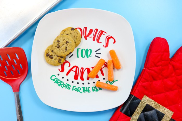 Cookies for Santa Plate with Cookies & Carrots on it