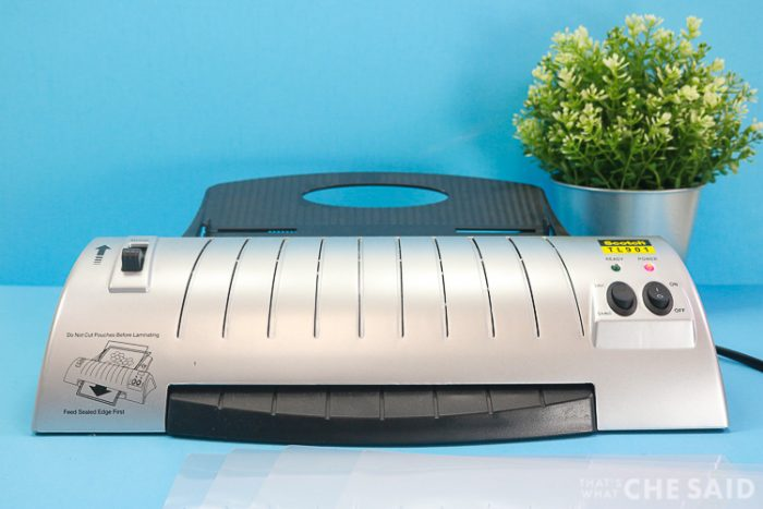 Home Laminator with small house plant