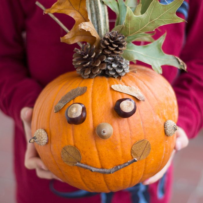 A pumpkin given a face with things from nature