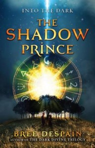 Into the Dark Book #1: The Shadow Prince By Bree Despain