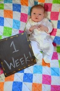 marlowe 1 week