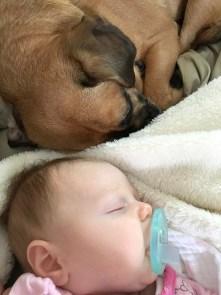 marlowe and boof