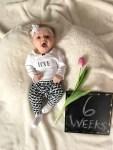 marlowe 6 weeks