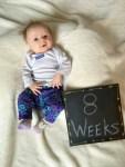 marlowe 8 weeks